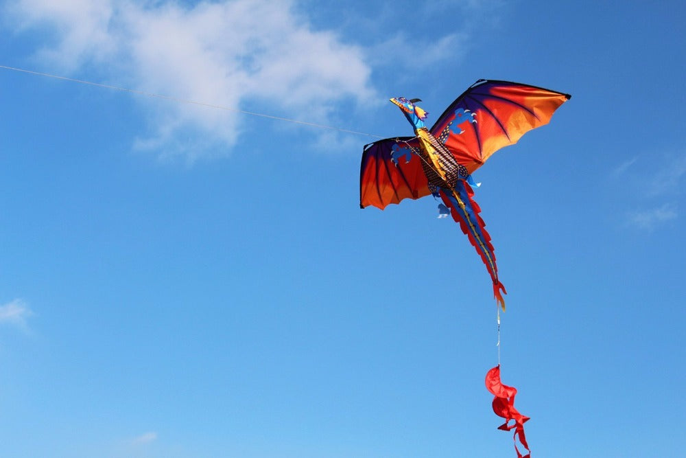 Classical Dragon Kite