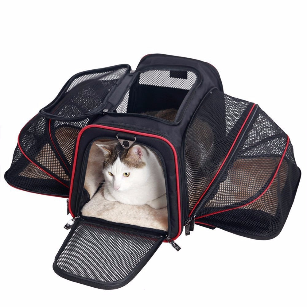 Jet Set Paws - Expandable & Foldable Pet Carrier - Sick Stuff