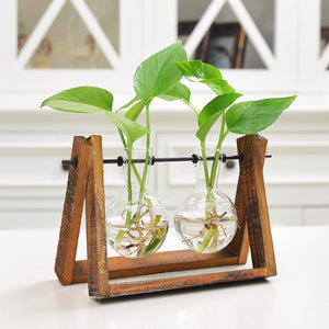 Rustic Plant Terrarium with Wooden Stand - Sick Stuff