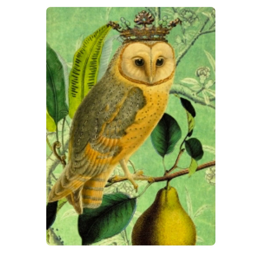 Card - Crowned Owl and Pear