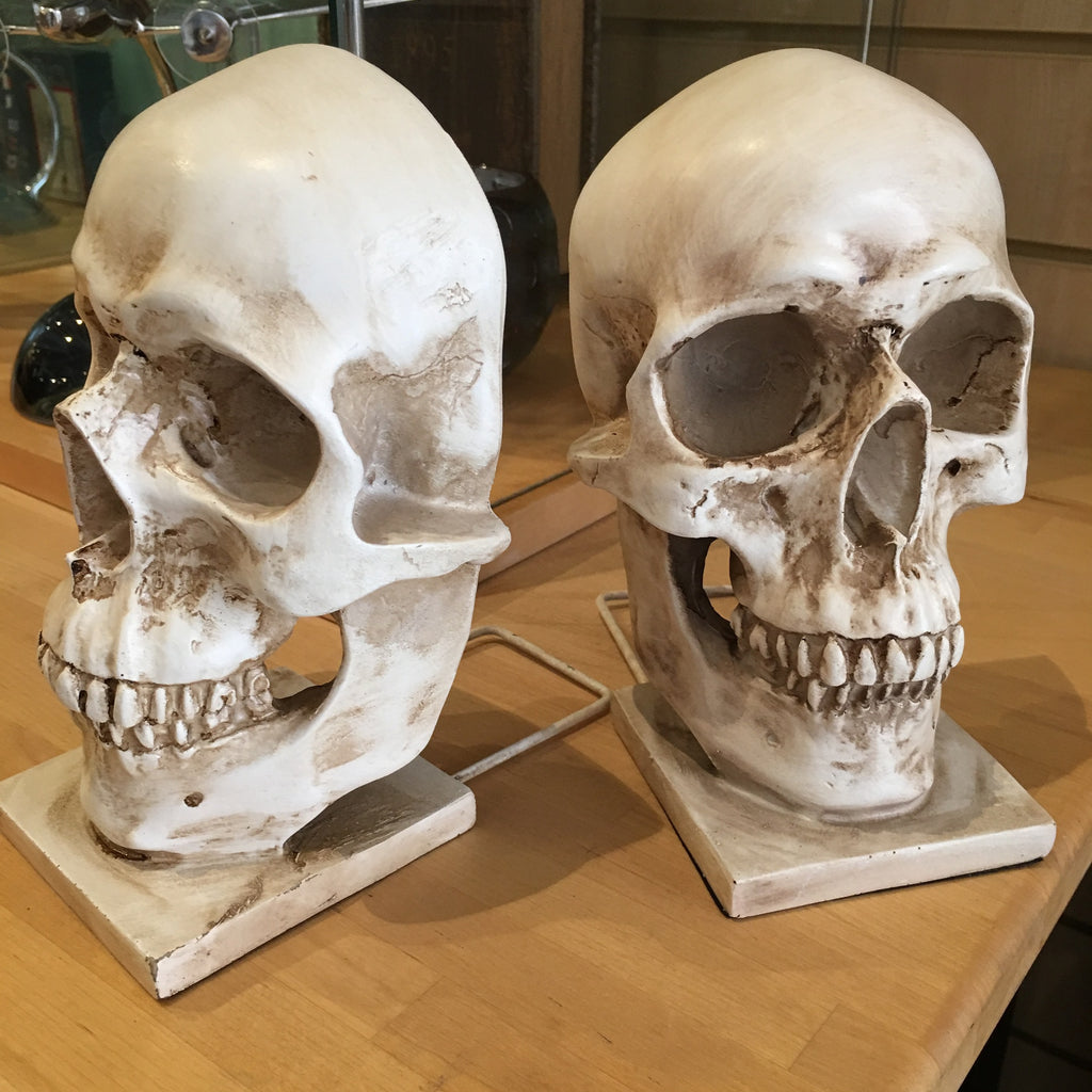 Skull Bookends