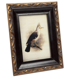 Regency Picture Frame 8x10