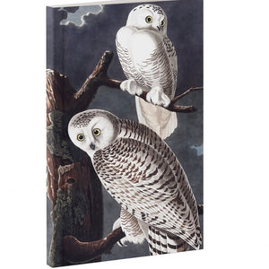 Journal - Owl