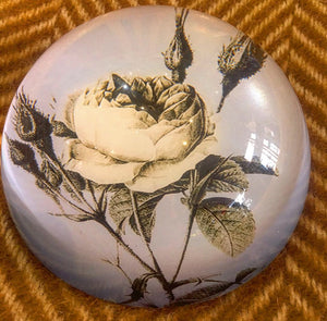 Paperweight - Rose