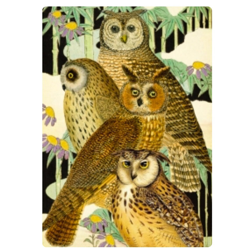 Card - Owls and Bamboo
