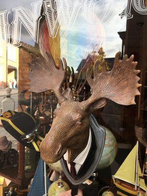 Dressed Moose Head Hook