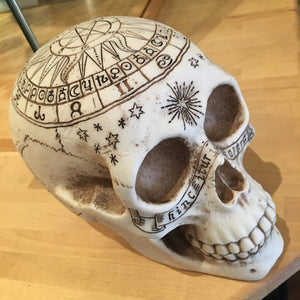Skull Astrological 20cms