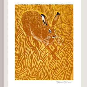 Card - Stubble Hare