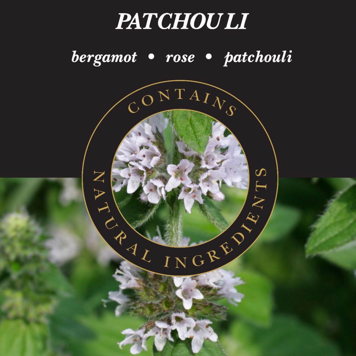 Incense sticks Patchuli
