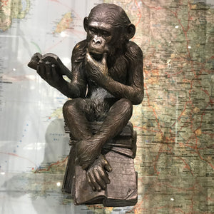 Darwin's Reading Monkey Figureen