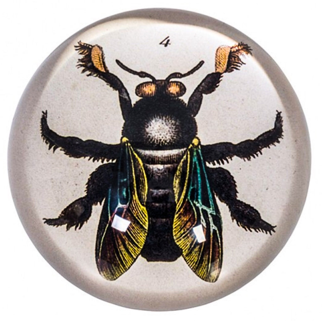 Paperweight - Bee