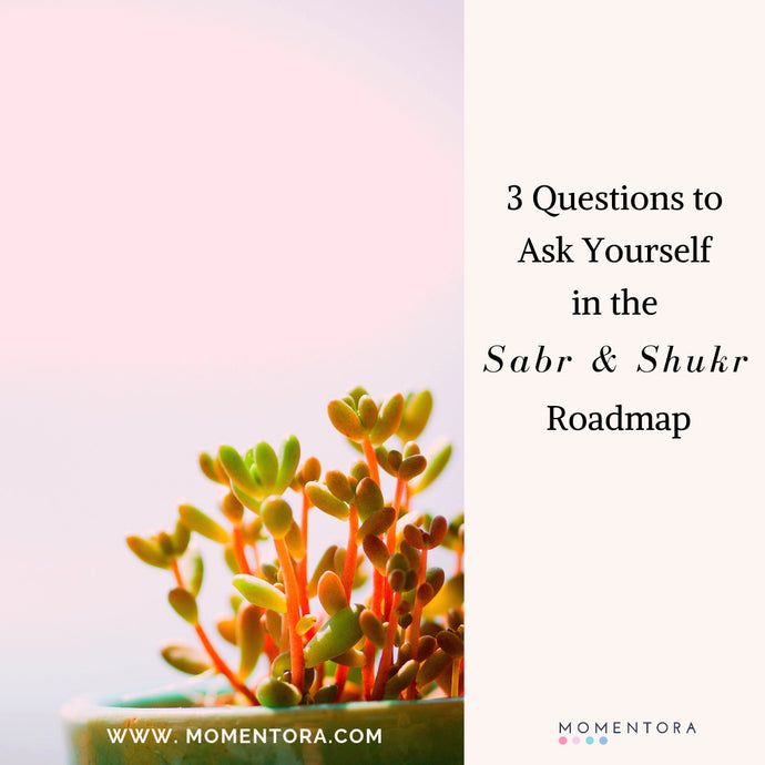 3 Questions to Ask Yourself In the The Sabr & Shukr Roadmap