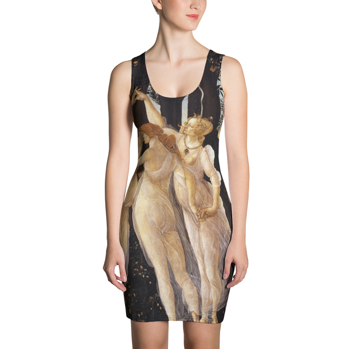 Sublimation Cut & Sew Dress - Art Masters Inspired