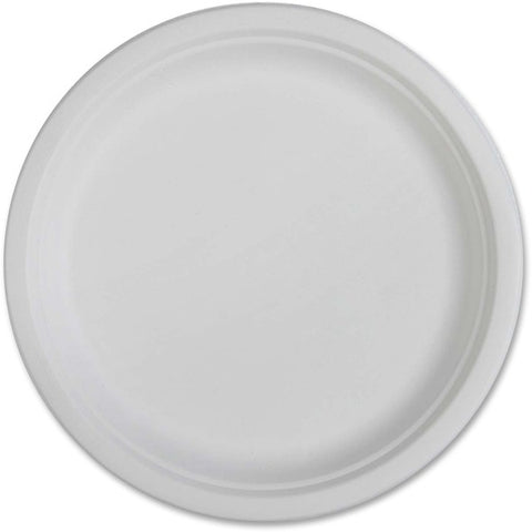 Genuine Joe Compostable Plates