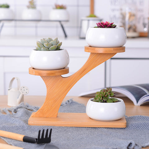 1 Set White Ceramic Garden Pots Modern Flowerpot Succulent Planter Pot 3 Bonsai Planters with 3-Tier Bamboo Shelf