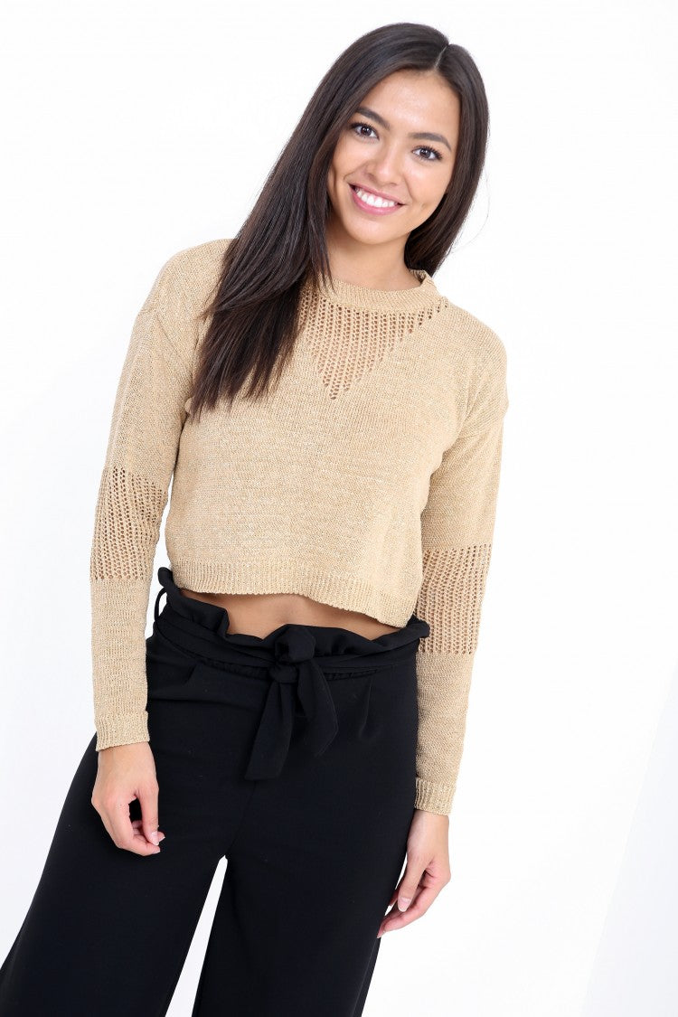 Lurex Knitted Cropped Jumper