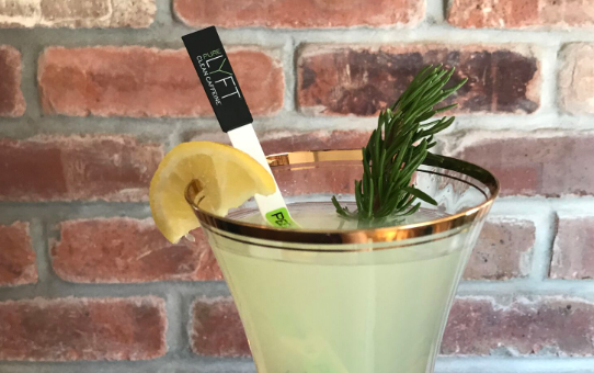 Rosemary Lemonade Spritzer