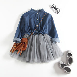 Baby Girl Denim Mesh Dress