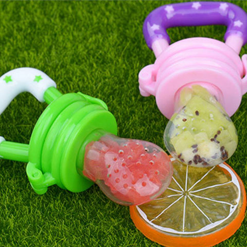 Image of Fresh Food Feeder Baby Pacifier - [5 Variants]