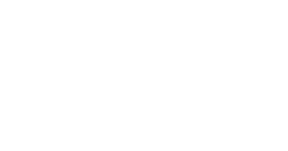 thesalvageguysonline