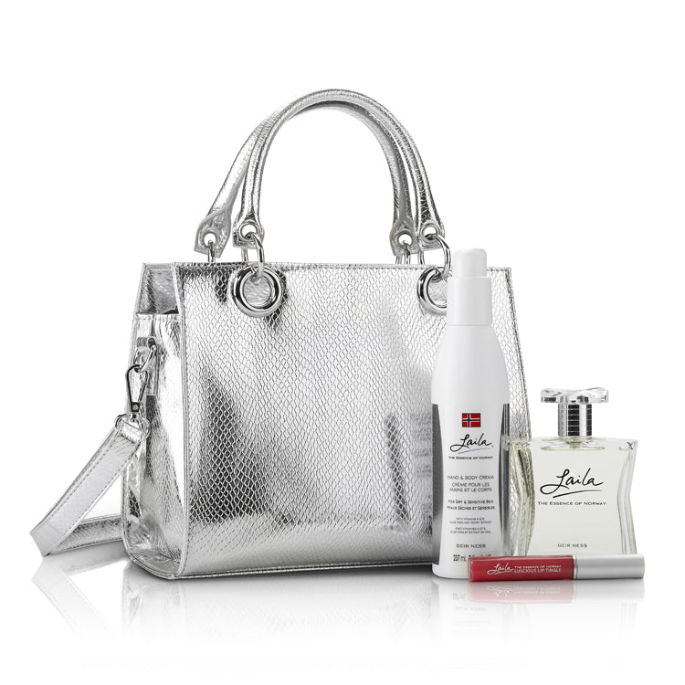 Silver Embossed Purse Set