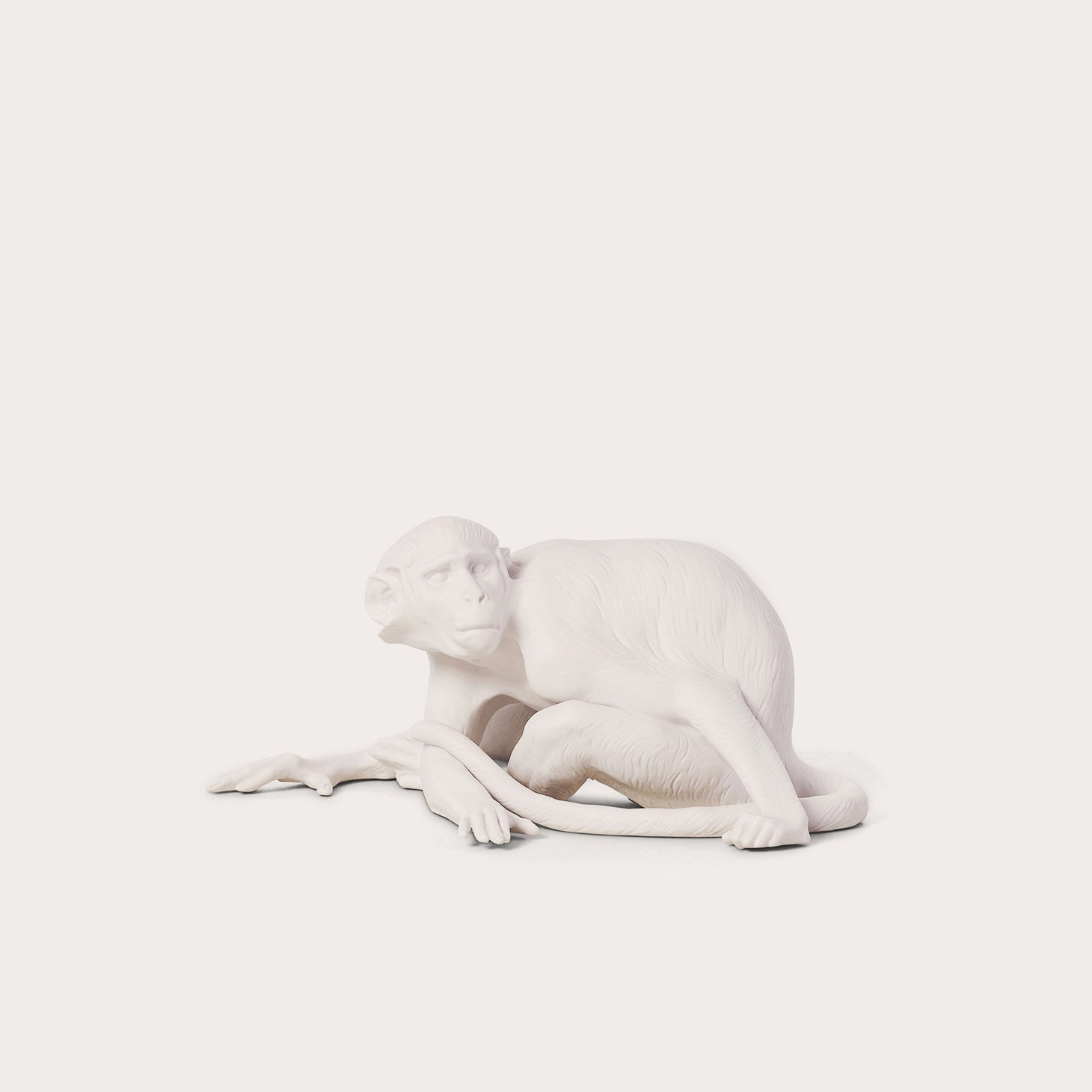 Animals-Monkey Accessories Nymphenburg Designer Furniture Sku: 542-100-10022