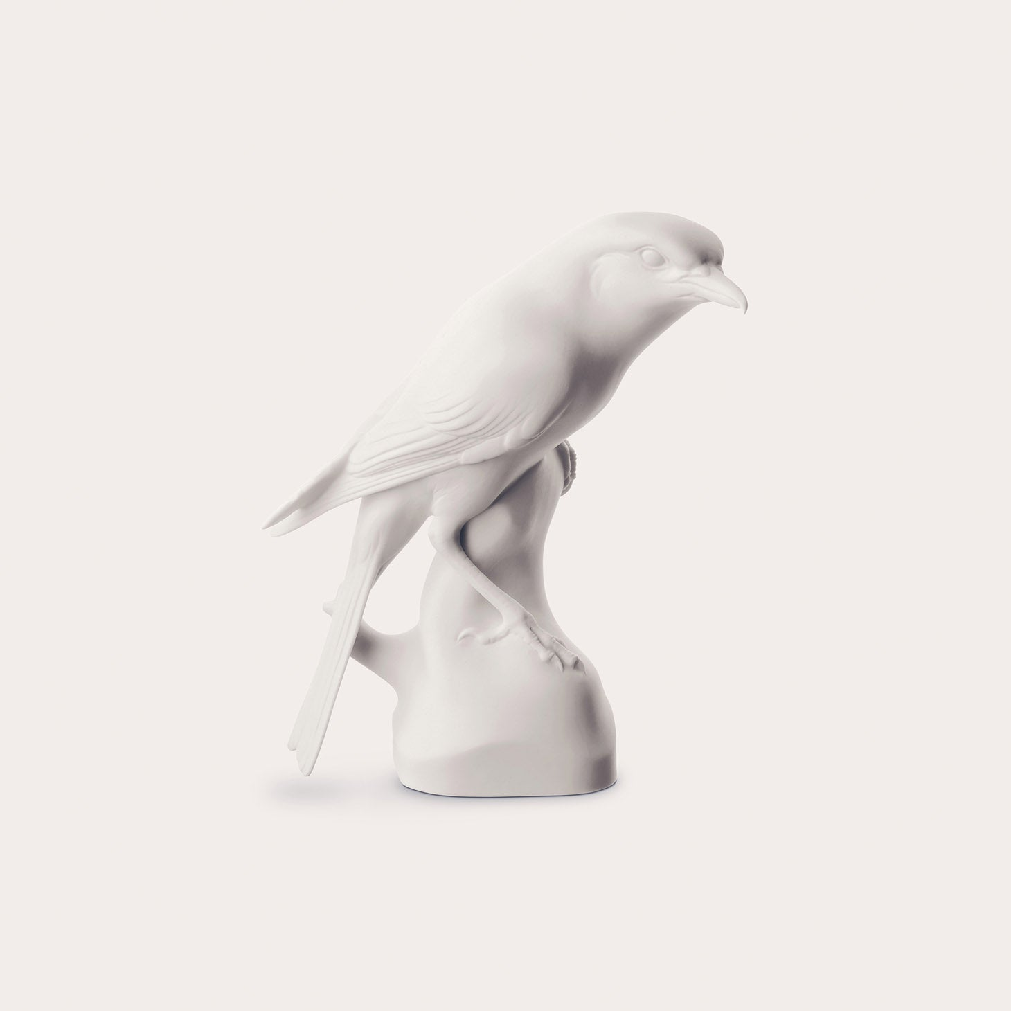 Birds-Shrike Accessories Nymphenburg Designer Furniture Sku: 542-100-10038