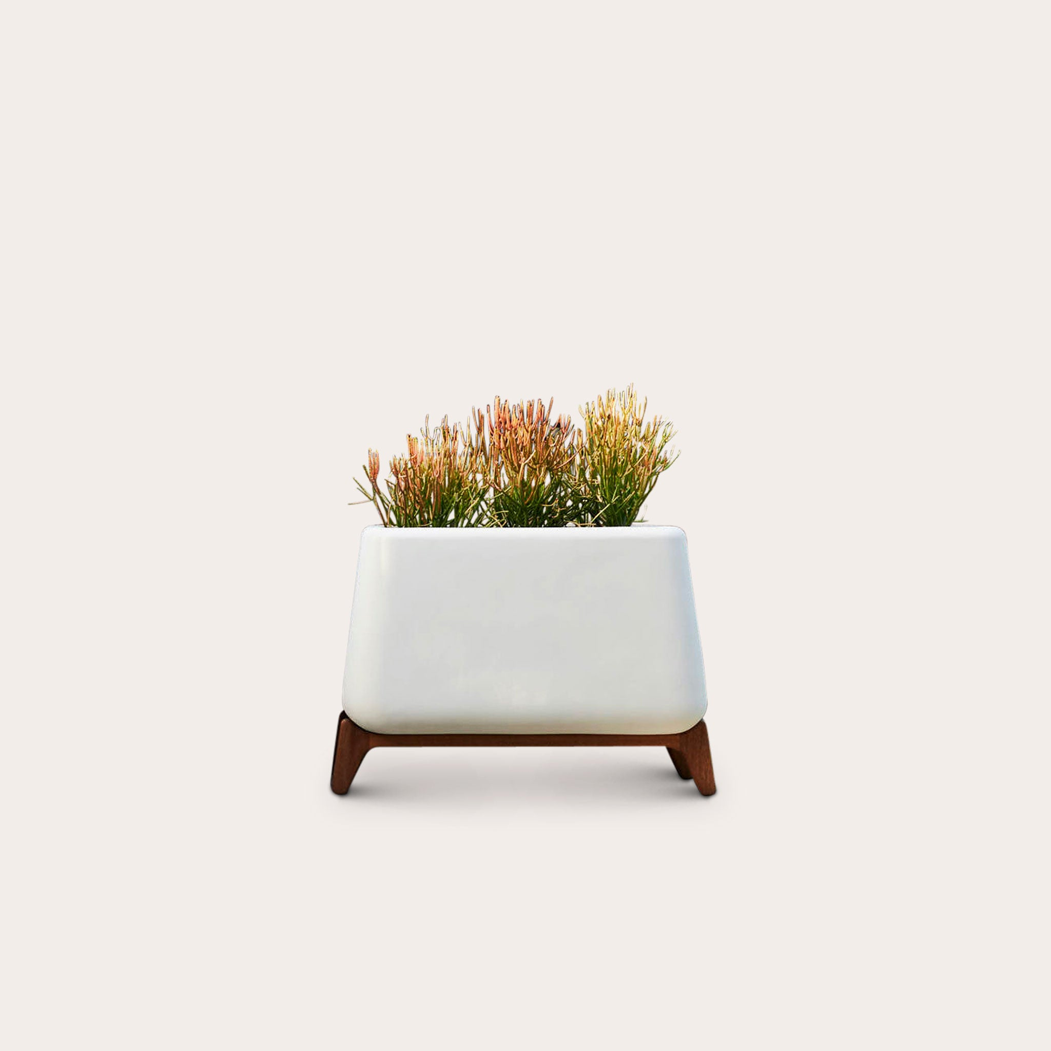 Terra Trough planters Laurie Wiid van Heerden Designer Furniture Sku: 621-100-10009