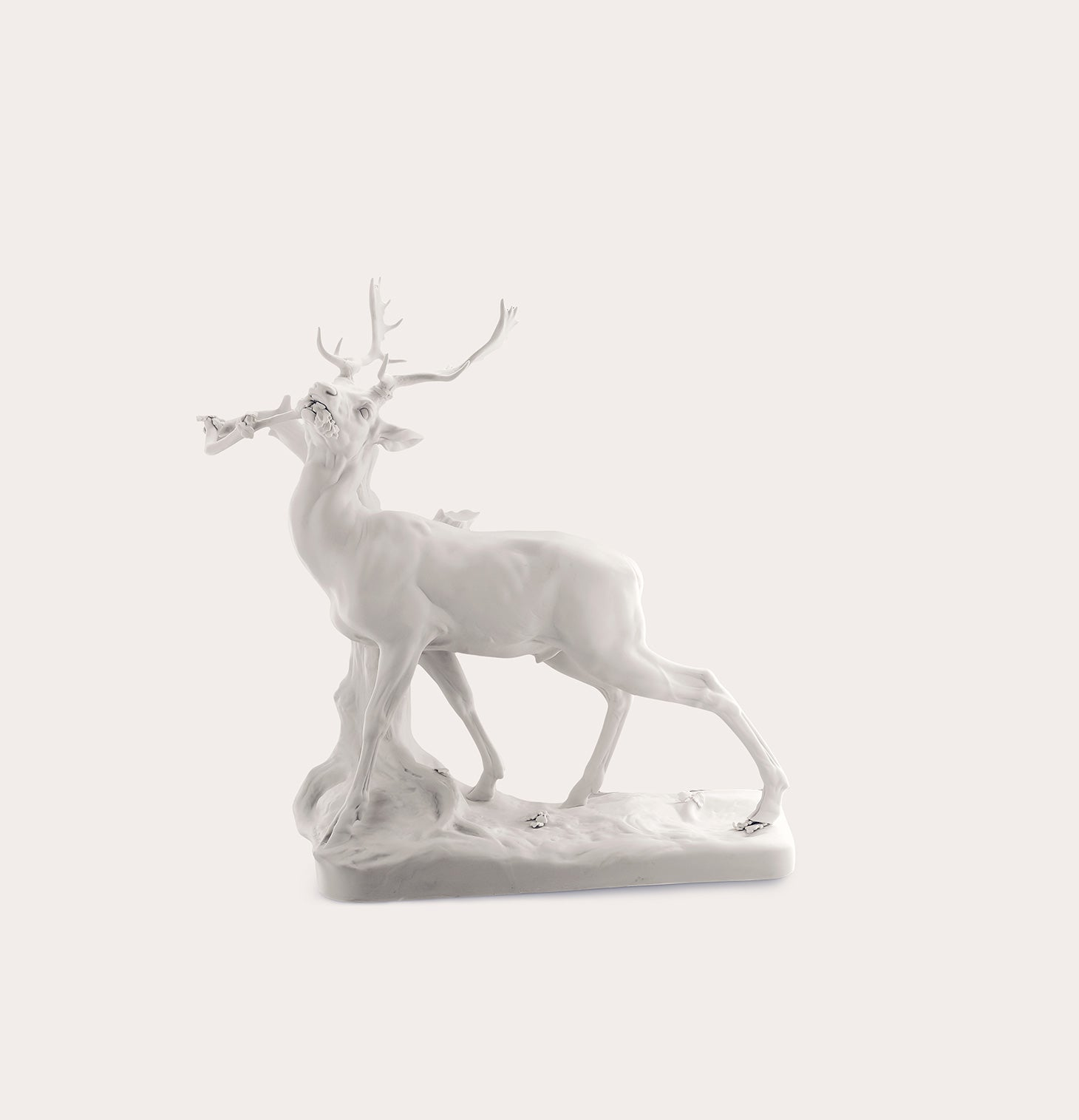 Animals-Stag Theo At Trunk Accessories Nymphenburg Designer Furniture Sku: 542-100-10191