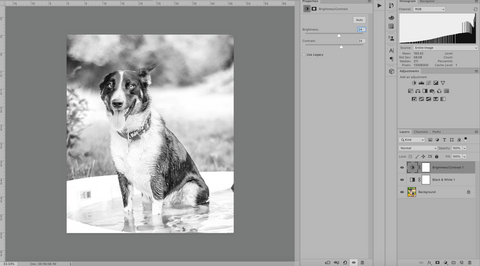 Rio brightness and contrast settings in Photoshop