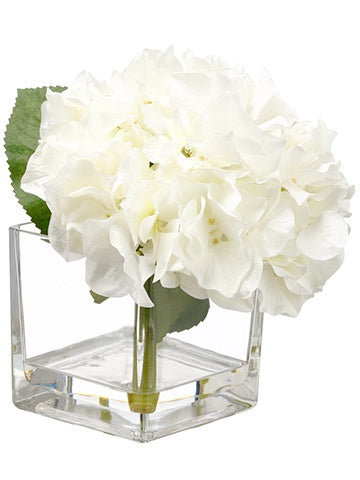 Hydrangea In Square Glass Vase