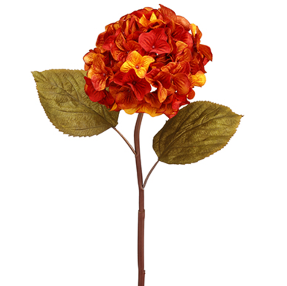 Orange Hydrangea Stem