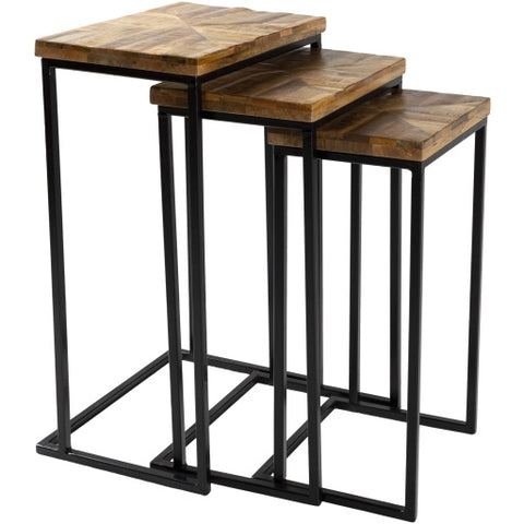 Troyes Natural Wood + Metal Nesting End Table Set