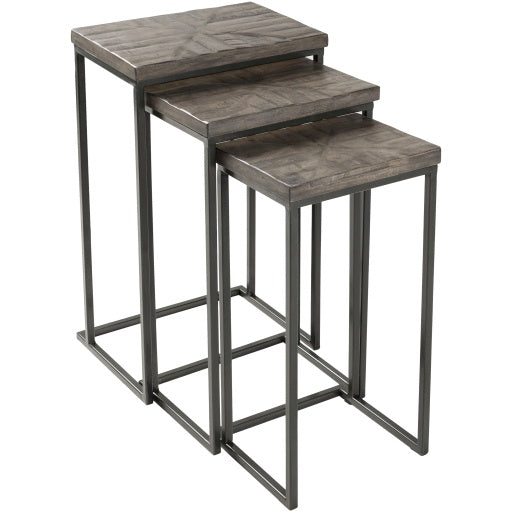 Troyes Gray Wood + Metal Nesting End Table Set