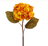 GoldHydrangea Stem