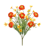 Orange Ranunculus Stems