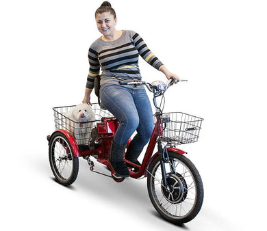 Ewheels - EW-29 - Electric Adult Tricycle