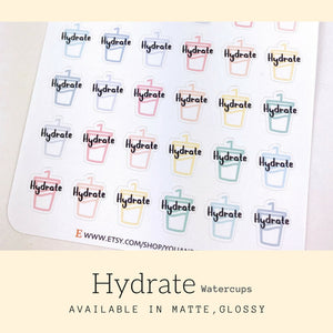 Planner Sticker | Erin Condren | IFS18