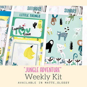Weekly Kit | Summer Sticker | Erin Condren | WK39