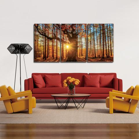 Chic Home Decor Botanical Forest 3 Piece Set Wrapped Canvas Wall Art Giclee Print Sunrise in Woods-HDP9305-CHB