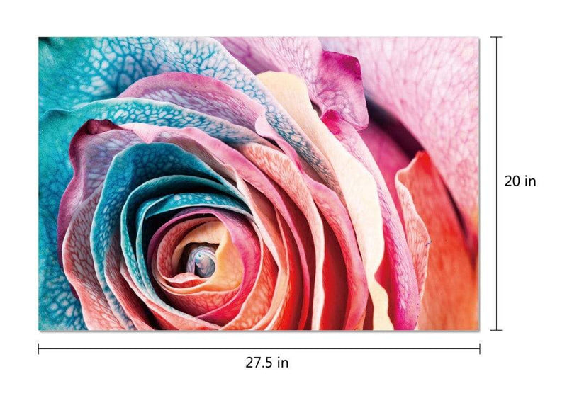 Chic Home Decor Rosalia 1 Piece Wrapped Canvas Wall Art Giclee Print Floral Rose in Bloom-