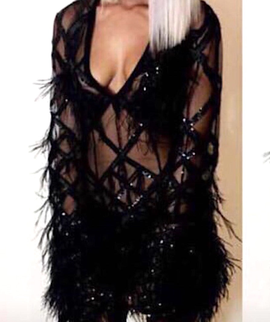 Feather Sequin Net