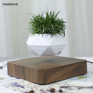 Levitating Air Bonsai Pot!!!