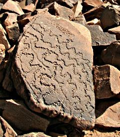 fossil engraving reliefs rug morocco