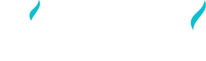 VanGo Vapes Wholesale