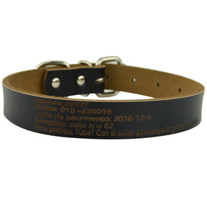 Cow Leather Dog Collars with Custom Print Engraving
