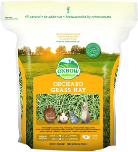 Oxbow Orchard Grass Hay Small Animal Food 15 oz
