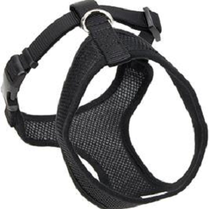 Coastal Comfort Black Dog Harness (Small)
