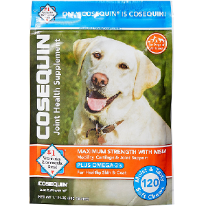 Nutramax Cosequin Maximum Strength (DS) Plus MSM Soft Chews Joint Health Dog Supplement (60 Count)