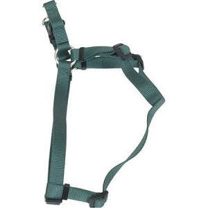 Coastal Adjustable Nylon Harness Hunter Green for Dogs